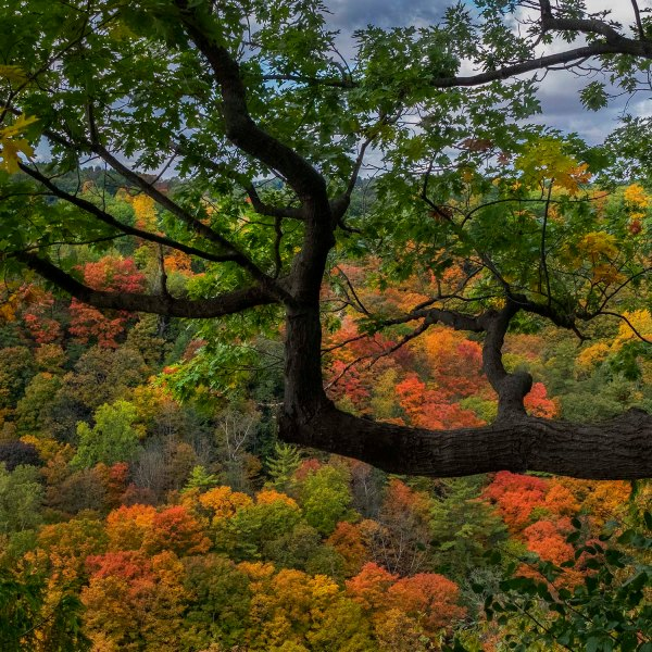Christie.Lake.2019_fall.colors_02